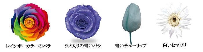 プリザーブドフラワー特有の花色