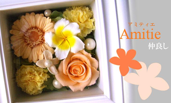 アミティエ(オレンジ)【プリザーブドフラワー】
