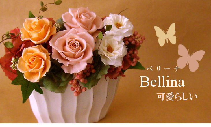 ベリーナ(ピンク)【プリザーブドフラワー】