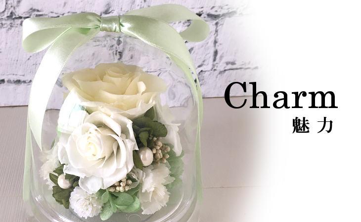 チャーム(ホワイト)【プリザーブドフラワー】