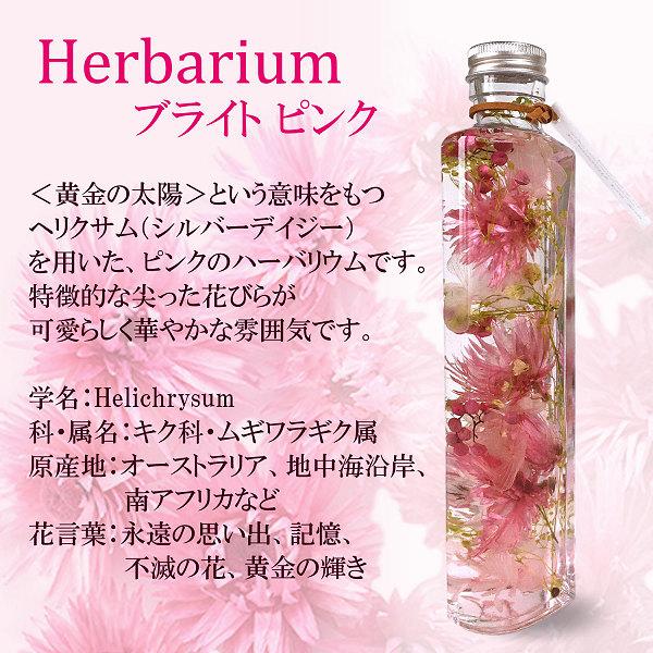 ハーバリウム・ブライト(ピンク)