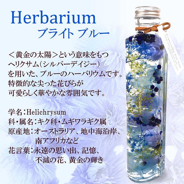 ハーバリウム・ブライト(ブルー)