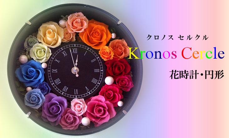 クロノス・セルクル(ヴィヴィット)【プリザーブドフラワー】