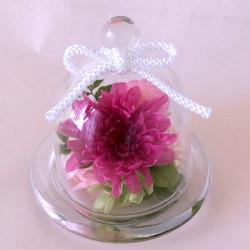 お供え、お悔やみ花のプリザーブドフラワー まめ菊(ピンク)