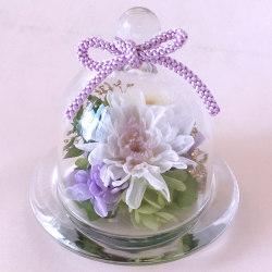 お供え、お悔やみ花のプリザーブドフラワー まめ菊(ホワイト)