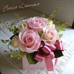 ローズペシェ(ピンク)
