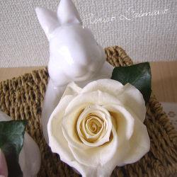 お悔み・お供えのプリザーブドフラワー「サンクスラビット(ホワイト)」