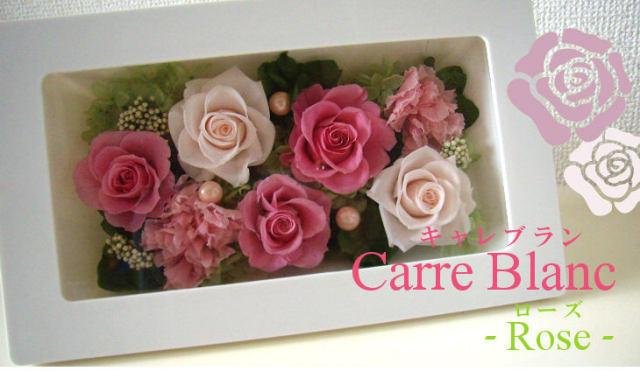 誕生日祝いのプリザーブドフラワー 人気2位  キャレブラン・ローズ(ピンク)
