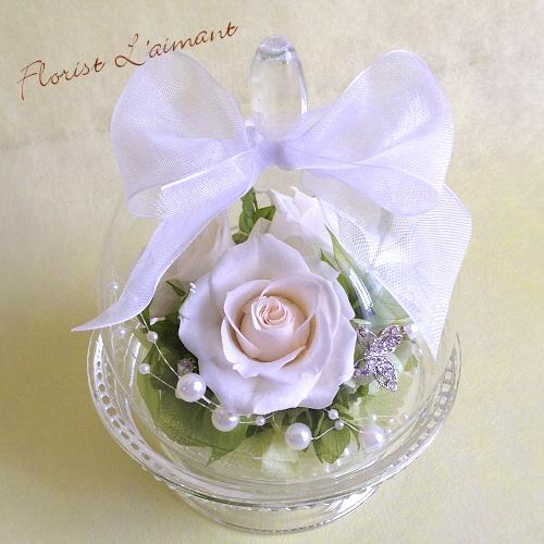 清楚な白バラのガラスドームアレンジ|プリエール(ホワイト)