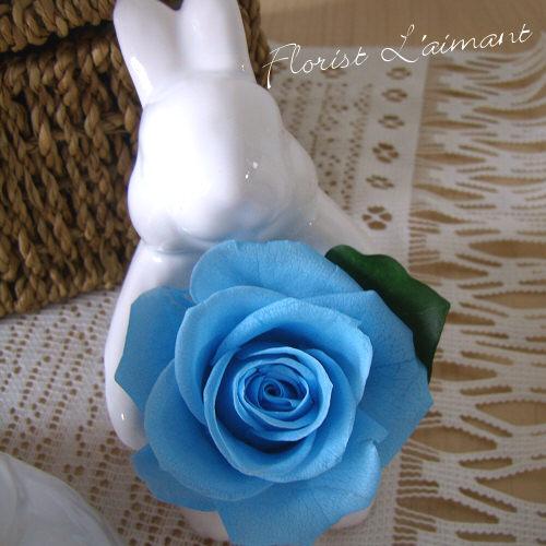 可愛いウサギがプリザーブドフラワーをお届け|サンクスラビット(ブルー)