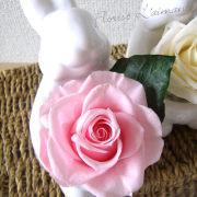 サンクスラビット(ピンク)