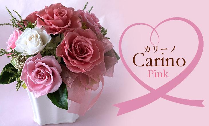 カリーノ(ピンク)【プリザーブドフラワー】