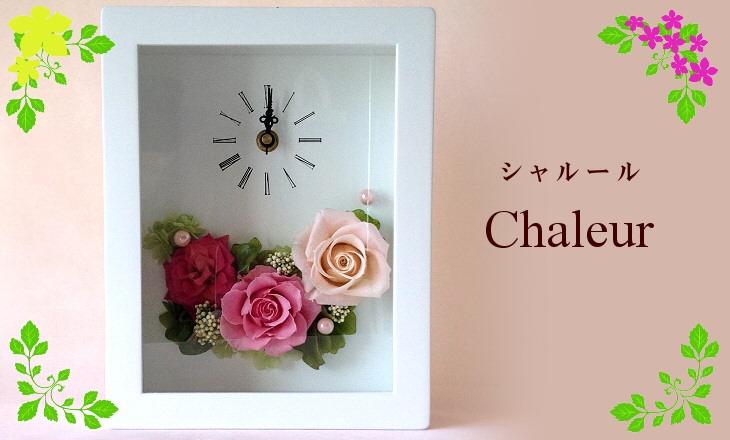 シャルール(ピンク)【プリザーブドフラワー】