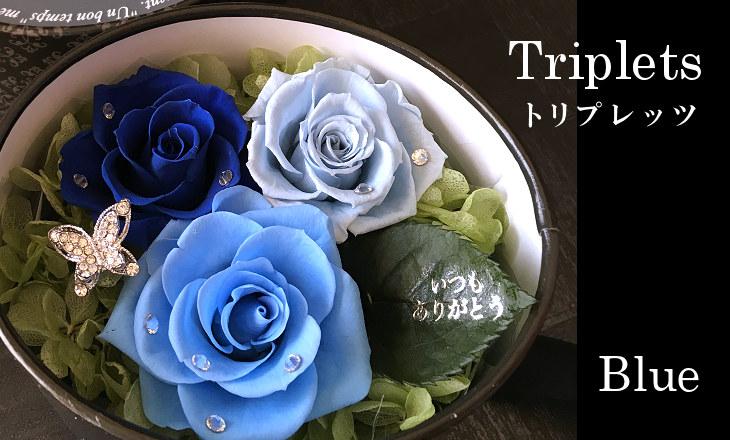 トリプレッツ(ブルー)【プリザーブドフラワー】