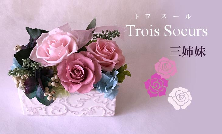 トワスール(ピンク)【プリザーブドフラワー】
